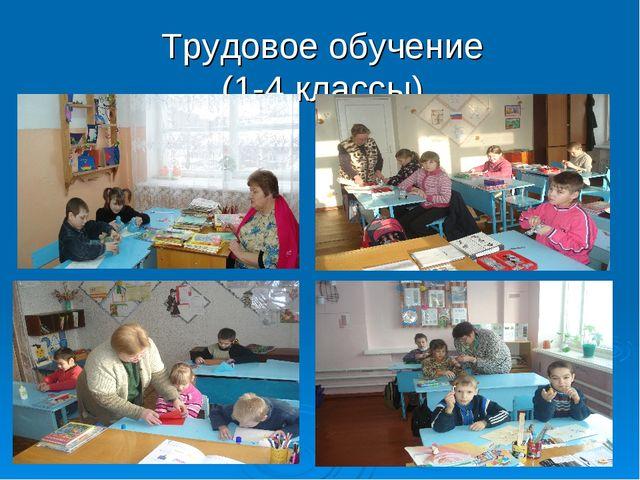 Трудовое обучение (1-4 классы)