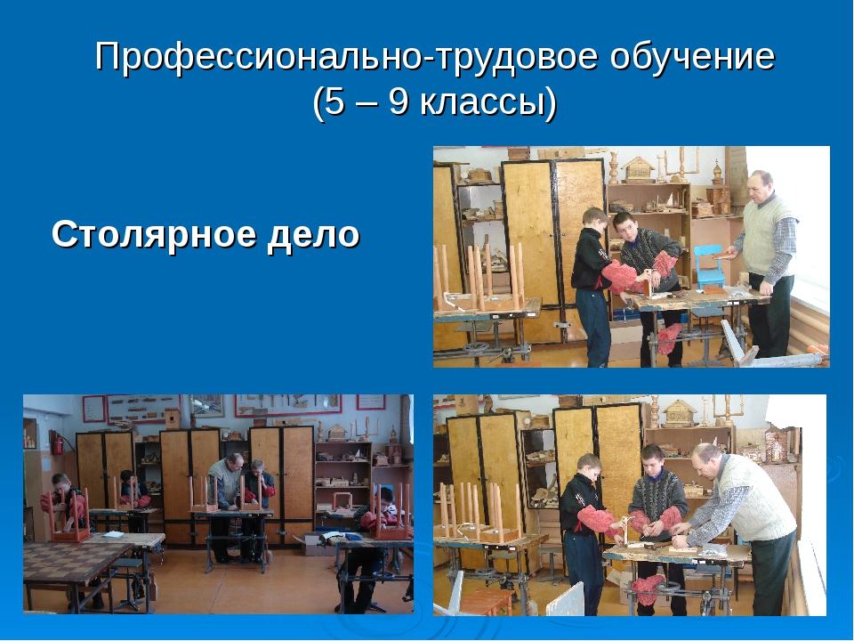 Профессионально-трудовое обучение (5 – 9 классы) Столярное дело