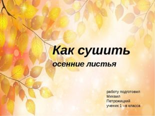 Как сушить осенние листья работу подготовил Михаил Петрожицкий ученик 1 –в кл