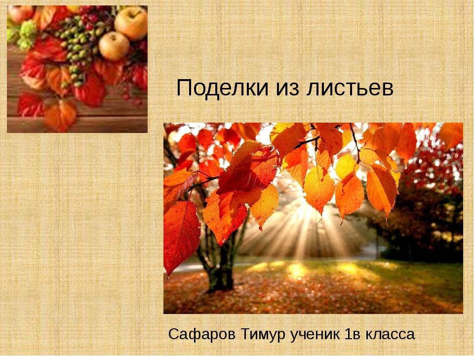 Поделки из листьев Сафаров Тимур ученик 1в класса