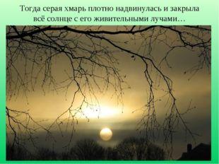 Тогда серая хмарь плотно надвинулась и закрыла всё солнце с его живительными