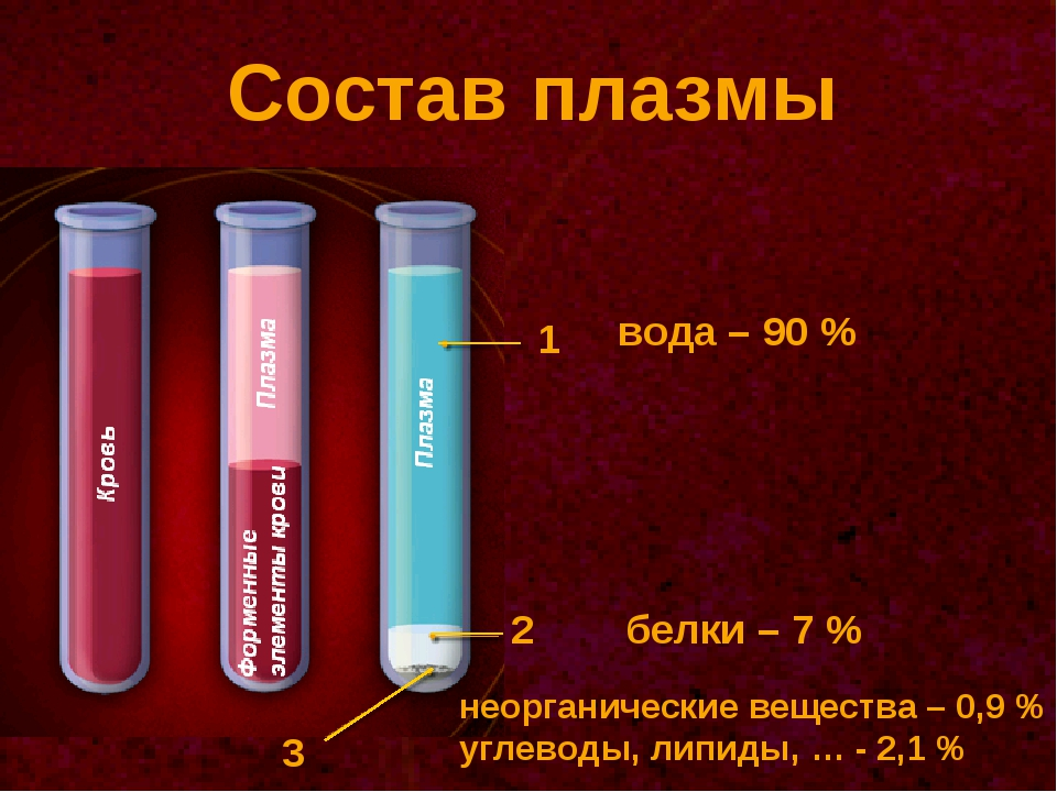 Состав плазмы 1 2 3 вода – 90 % белки – 7 % неорганические вещества – 0,9 % у...