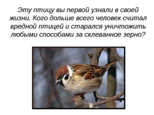 Эту птицу вы первой узнали в своей жизни. Кого дольше всего человек считал вр