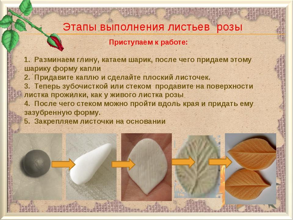 Этапы выполнения листьев розы Приступаем к работе: 1. Разминаем глину, катае...