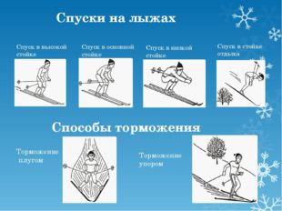Спуски на лыжах Спуск в высокой стойке Спуск в основной стойке Спуск в низкой