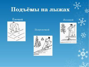 Подъёмы на лыжах Ёлочкой Полуёлочкой Лесенкой