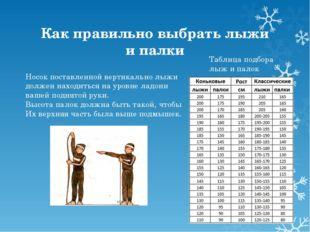 Как правильно выбрать лыжи и палки Носок поставленной вертикально лыжи должен