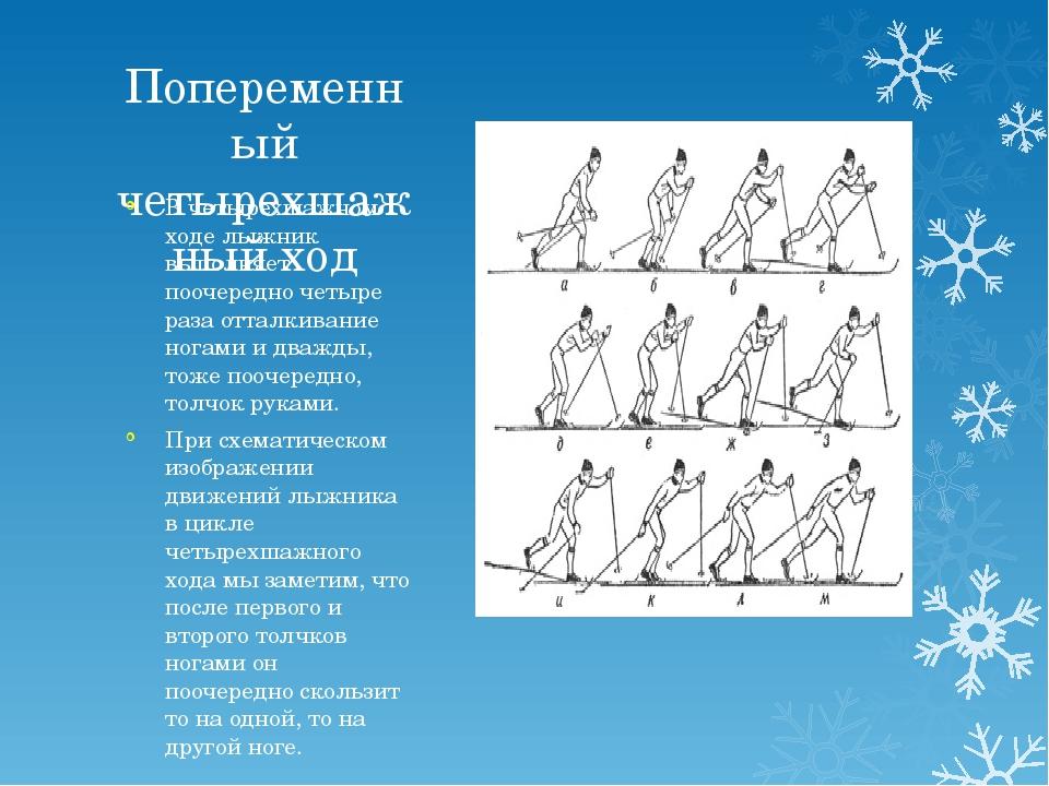Попеременный четырехшажный ход В четырехшажном ходе лыжник выполняет поочеред...