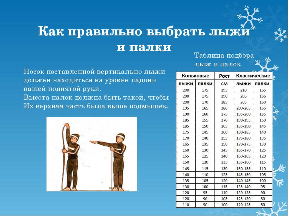 Как правильно выбрать лыжи и палки Носок поставленной вертикально лыжи должен...