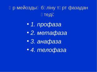 Әр мейоздық бөліну төрт фазадан өтеді: 1. профаза 2. метафаза 3. анафаза 4. т