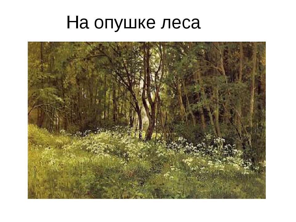 На опушке леса цветы