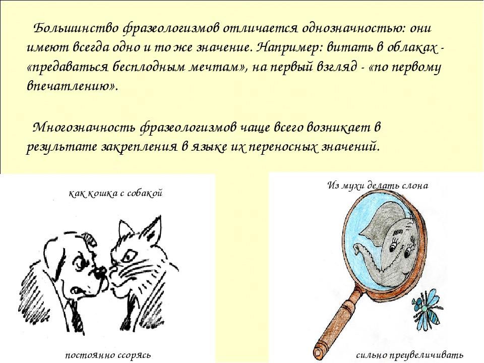 Большинство фразеологизмов отличается однозначностью: они имеют всегда одно...
