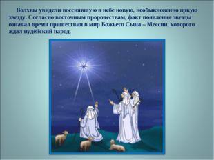 Волхвы увидели воссиявшую в небе новую, необыкновенно яркую звезду. Согласно