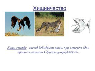 Хищничество Хищничество - способ добывания пищи, при котором один организм пи