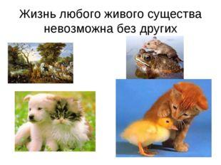Жизнь любого живого существа невозможна без других