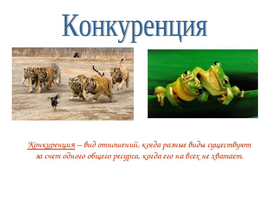 Конкуренция – вид отношений, когда разные виды существуют за счет одного обще...