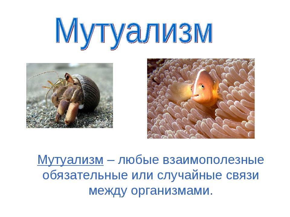 Мутуализм – любые взаимополезные обязательные или случайные связи между орган...