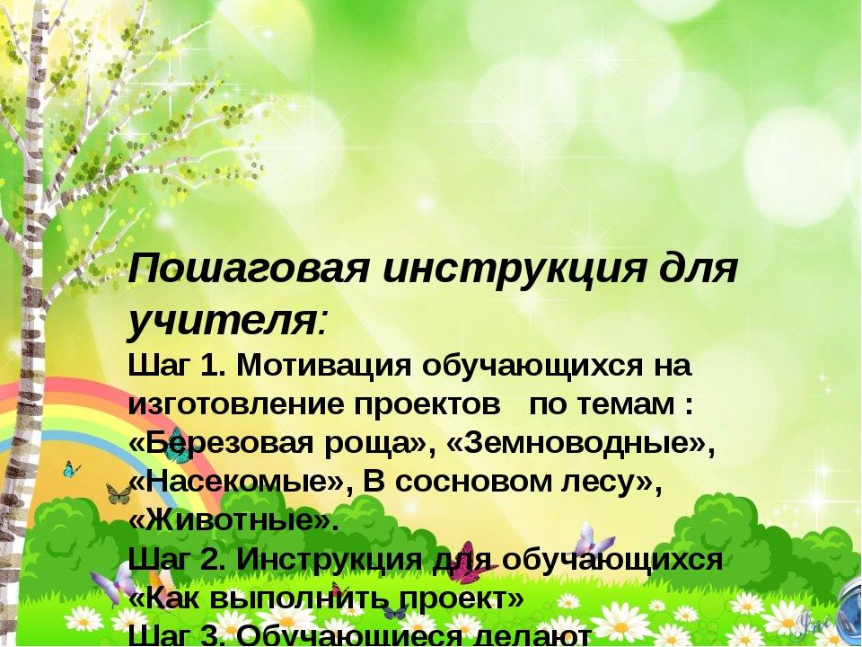 Пошаговая инструкция для учителя: Шаг 1. Мотивация обучающихся на изготовлени...