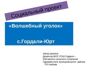 Социальный проект «Волшебный уголок» с.Гордали-Юрт Автор проекта: Директор МО