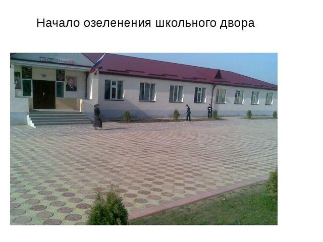 Начало озеленения школьного двора