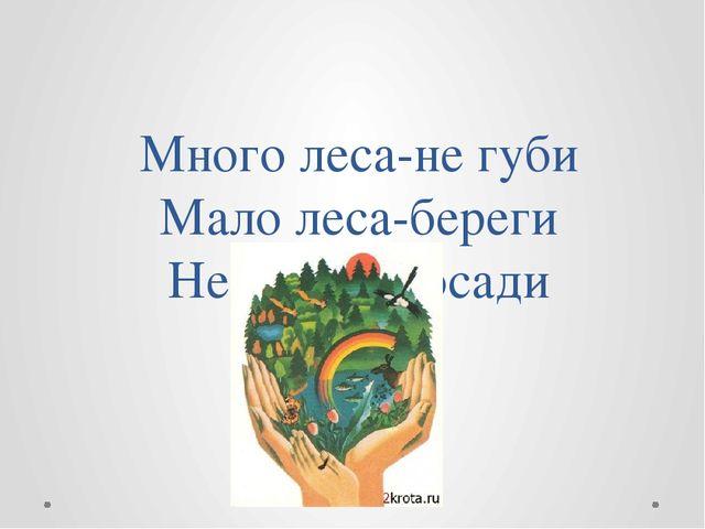 Много леса-не губи Мало леса-береги Нет леса -посади