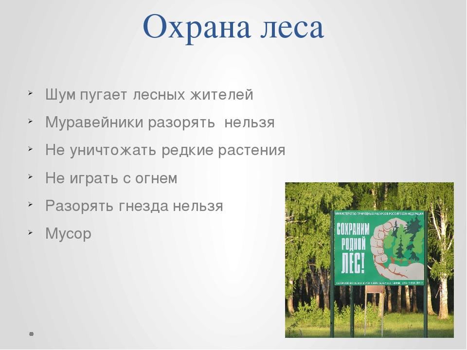 Охрана леса Шум пугает лесных жителей Муравейники разорять нельзя Не уничтожа...