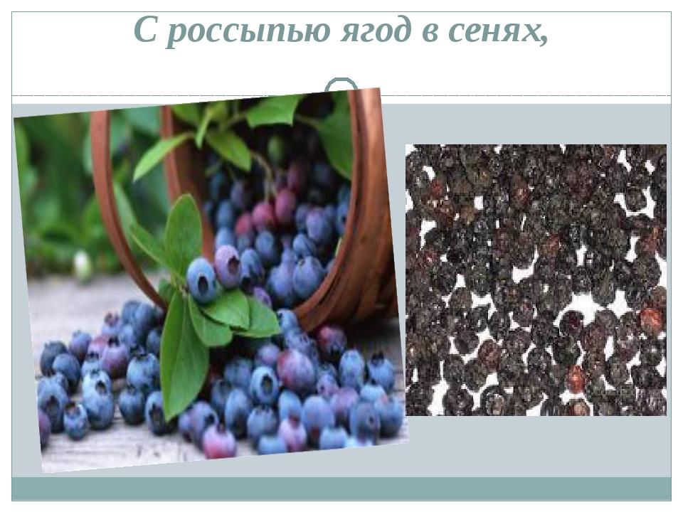 С россыпью ягод в сенях,