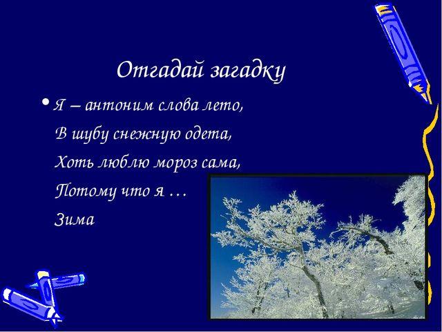 Отгадай загадку Я – антоним слова лето, В шубу снежную одета, Хоть люблю мо...