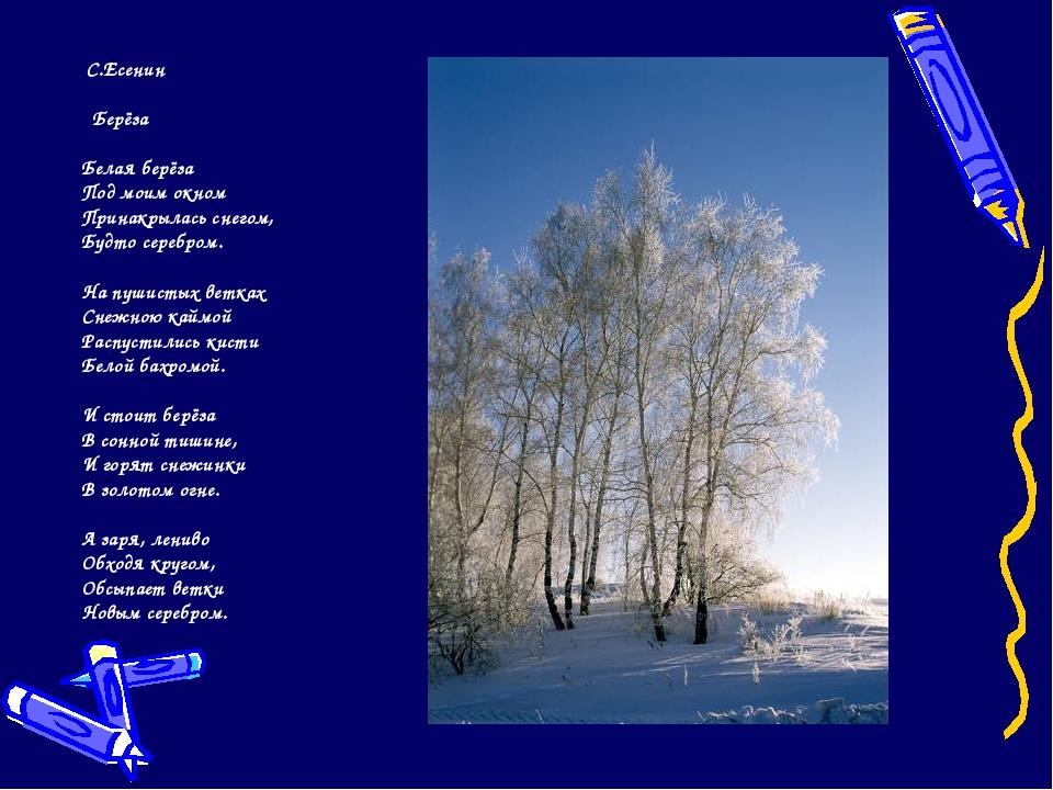 С.Есенин Берёза Белая берёза Под моим окном Принакрылась снегом, Будто сереб...