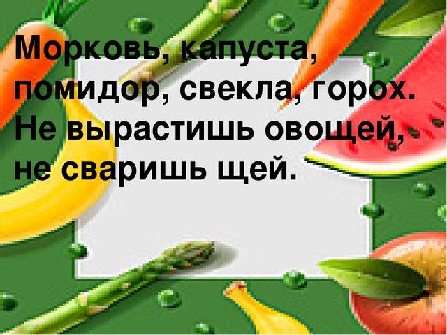 Морковь, капуста, помидор, свекла, горох. Не вырастишь овощей, не сваришь щей.