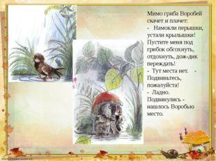 Мимо гриба Воробей скачет и плачет: - Намокли перышки, устали крылышки! Пус