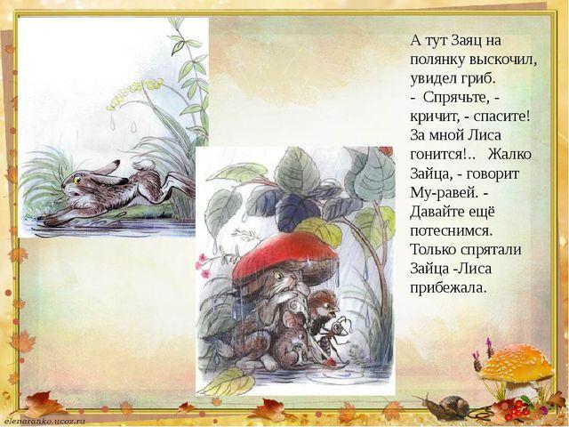 А тут Заяц на полянку выскочил, увидел гриб. - Спрячьте, - кричит, - спасите...
