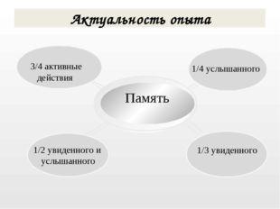 1/2 увиденного и услышанного 3/4 активные действия Память Актуальность опыта