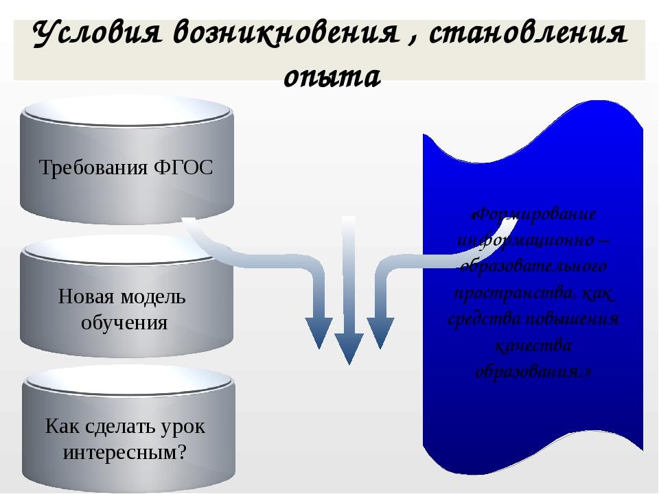 Требования ФГОС Условия возникновения , становления опыта «Формирование инфо...