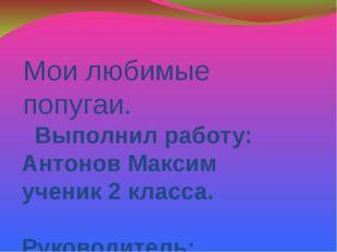 Мои любимые попугаи. Выполнил работу: Антонов Максим ученик 2 класса. Руковод