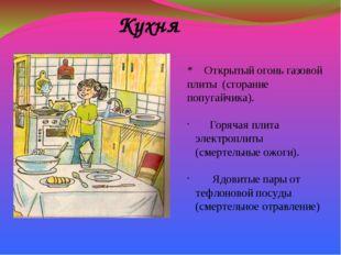 Кухня * Открытый огонь газовой плиты (сгорание попугайчика). Горячая плита эл
