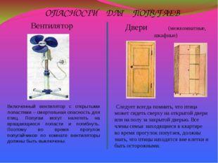ОПАСНОСТИ ДЛЯ ПОПУГАЕВ Включенный вентилятор с открытыми лопастями – смертель