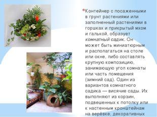 Контейнер с посаженными в грунт растениями или заполненный растениями в горшк