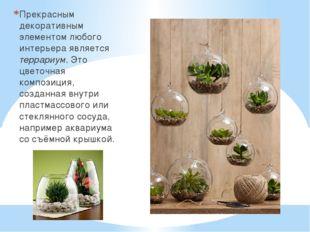 Прекрасным декоративным элементом любого интерьера является террариум. Это цв