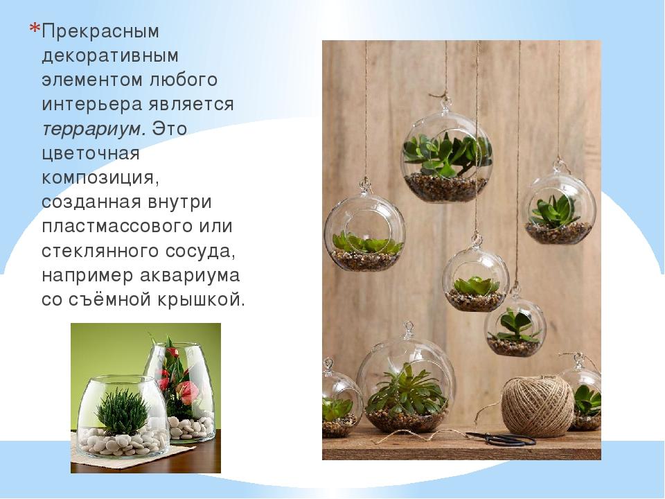 Прекрасным декоративным элементом любого интерьера является террариум. Это цв...