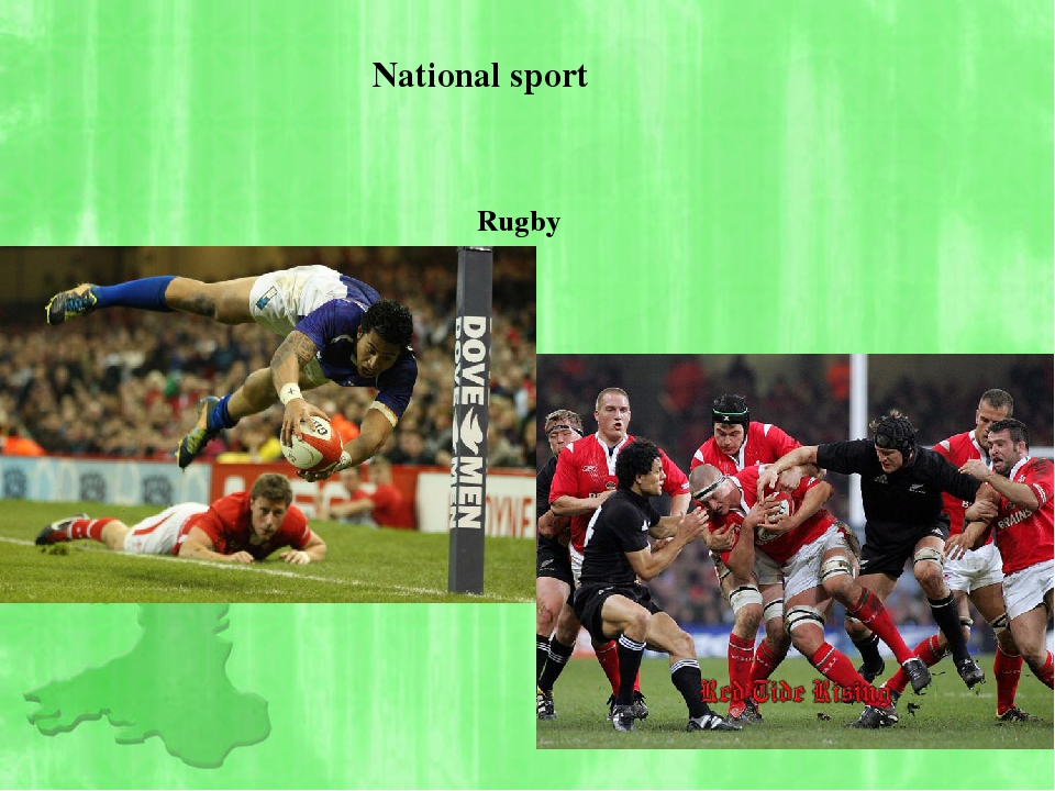 National sport Rugby