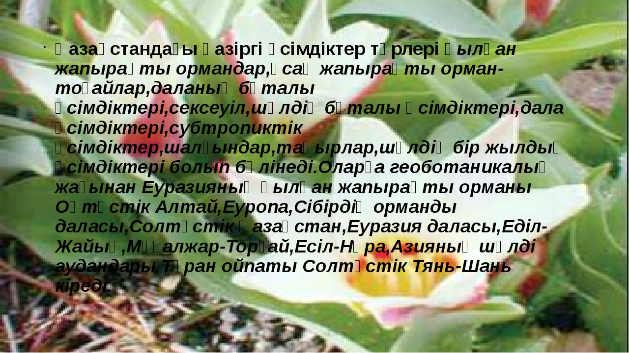 Қазақстандағы қазіргі өсімдіктер түрлері қылқан жапырақты ормандар,ұсақ жапыр...