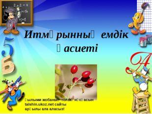 Итмұрынның емдік қасиеті Ғылыми жобаның толық нұсқасын talshin.ukoz.net сайты