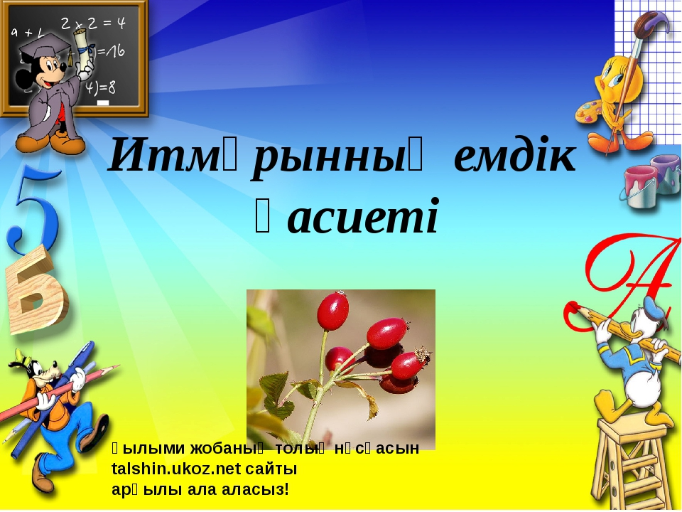 Итмұрынның емдік қасиеті Ғылыми жобаның толық нұсқасын talshin.ukoz.net сайты...