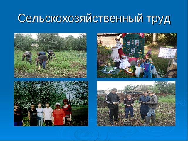 Сельскохозяйственный труд
