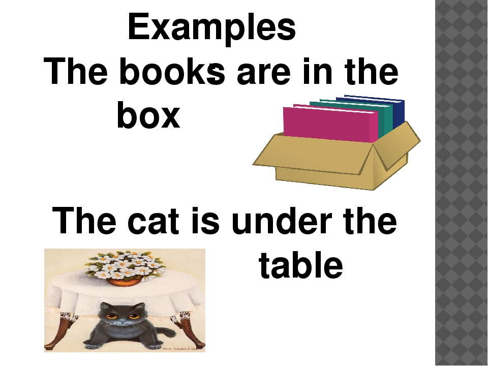 Examples: The books are in the box The cat is under the table
