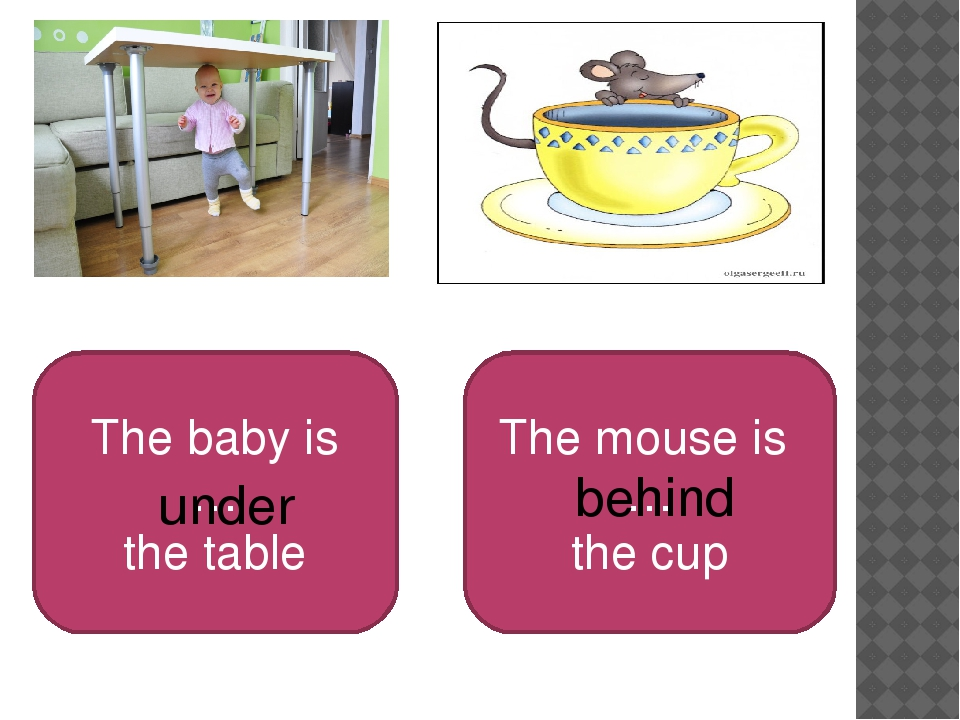 The baby is … the table The mouse is … the cup under behind