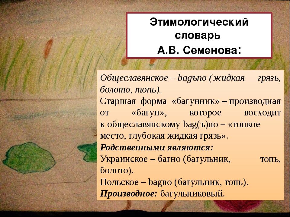 Общеславянское–bagъno(жидкая грязь, болото, топь). Старшая форма «багунник...