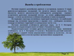 Выводы и предложения Изучение видового разнообразия деревьев и кустарников,