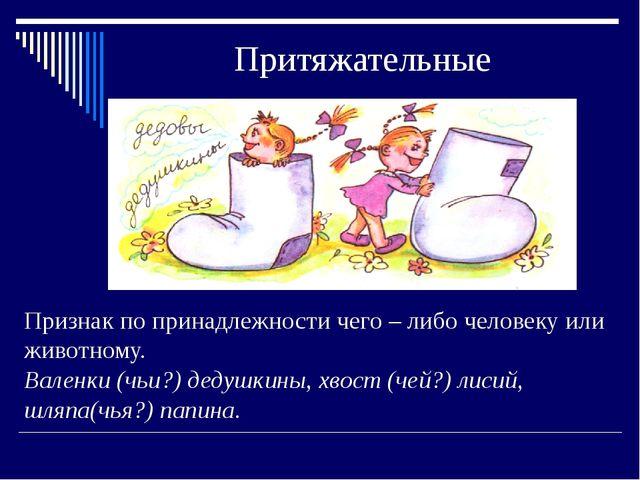 Притяжательные Признак по принадлежности чего – либо человеку или животному....